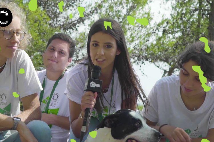 Embedded thumbnail for Cascais Jovem | 20 anos de voluntariado jovem